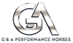 G & A PERFORMANCE HORSES Logo